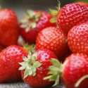 Types of Strawberry Plants