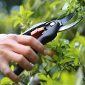 Best Pruning Shears Reviews
