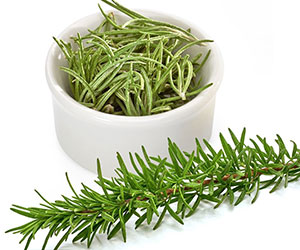 Rosemary Background