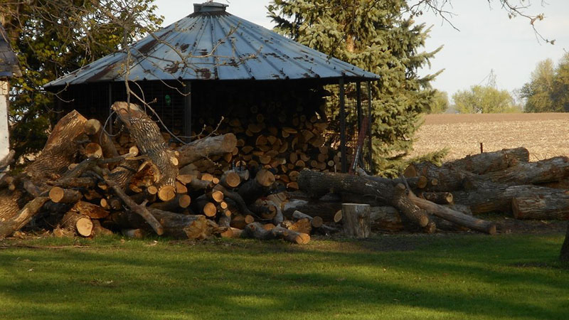 Logs to Firewood