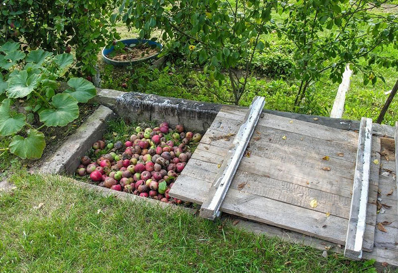 Create Compost Pit