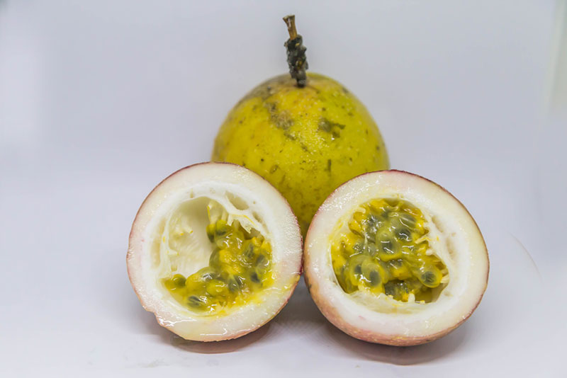 Giant Passion Fruit