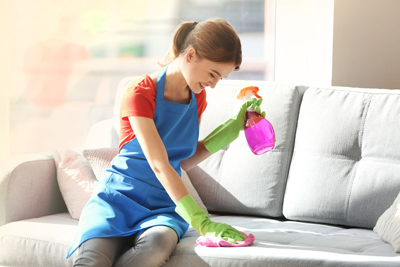 Removing Stains from Sofa