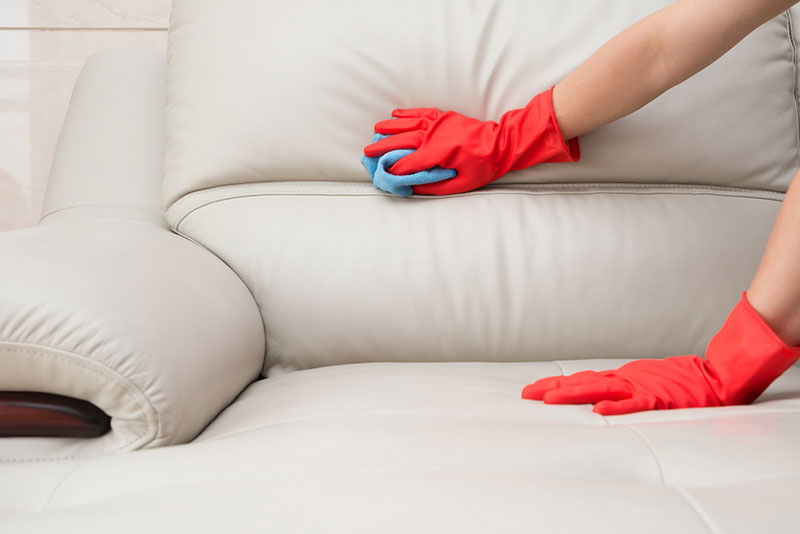 Routine Cleaning of Couch