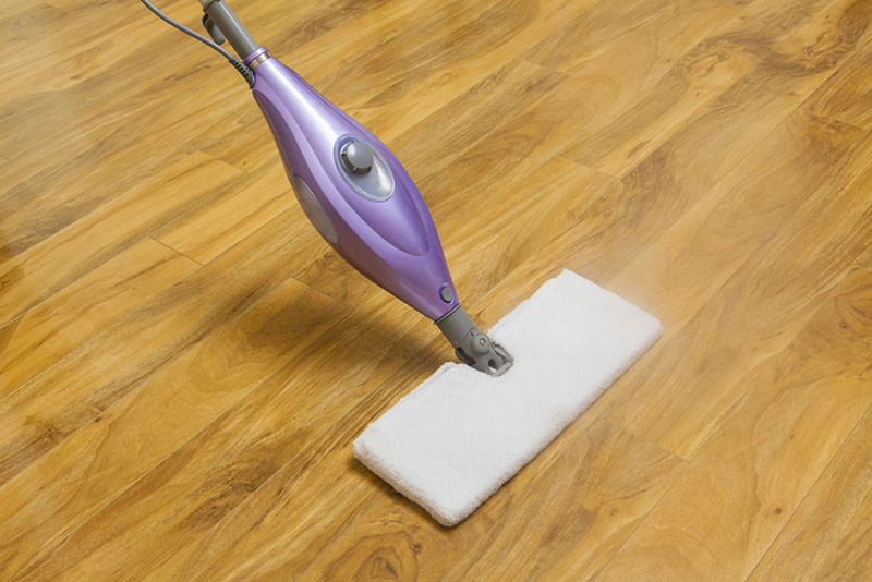 Using Steam Mop