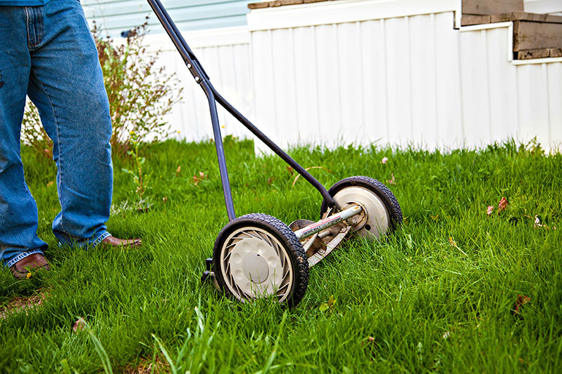 Regular Mowing of Lawn